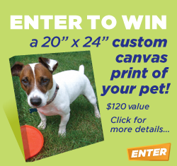 Enter to win a custom canvas print